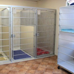 Clean and inviting kennels