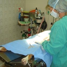 Dr. Joan at Surgery